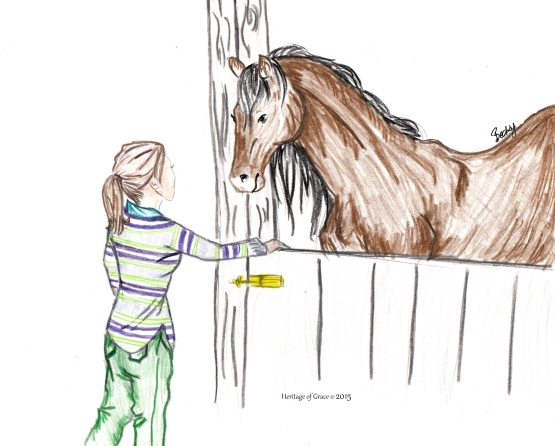A collection of horse sketches heritage of grace for How to draw a barn easy